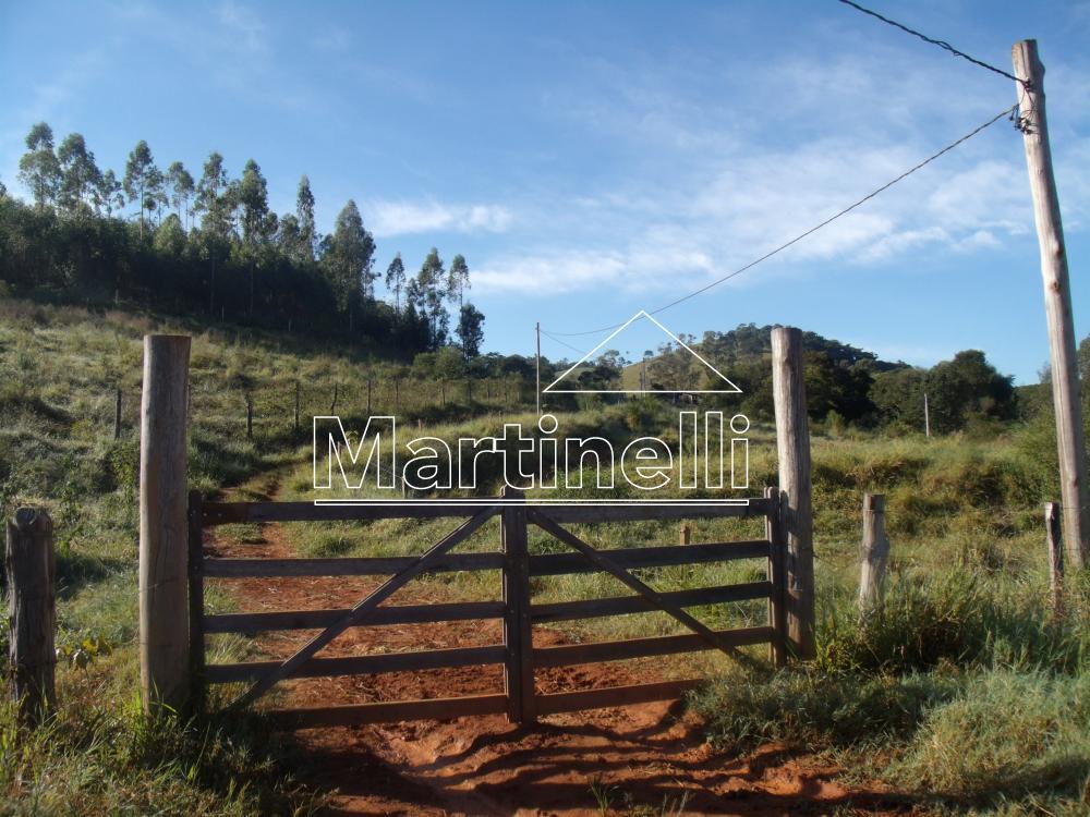 Comprar Rural / Fazendas - Sitios em Caconde apenas R$ 480.000,00 - Foto 2