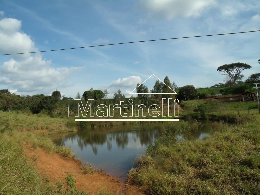 Comprar Rural / Fazendas - Sitios em Caconde apenas R$ 480.000,00 - Foto 3