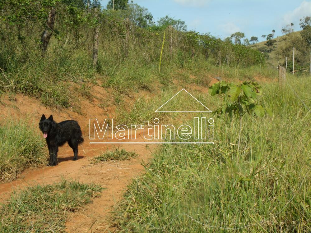 Comprar Rural / Fazendas - Sitios em Caconde apenas R$ 480.000,00 - Foto 4