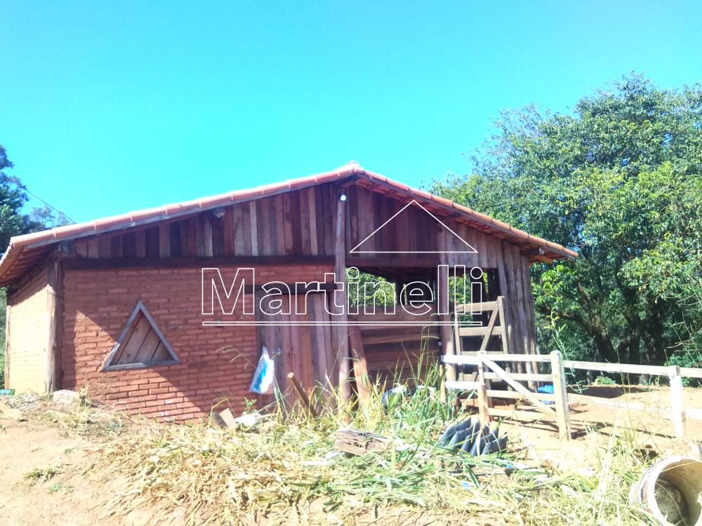 Comprar Rural / Fazendas - Sitios em Caconde apenas R$ 480.000,00 - Foto 6