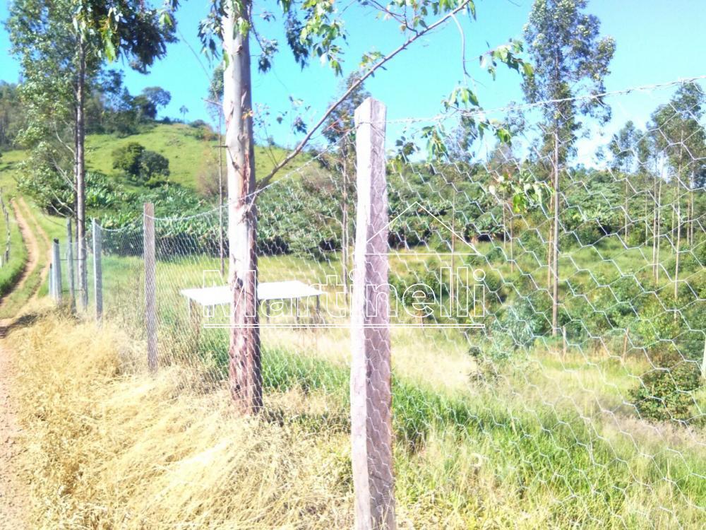 Comprar Rural / Fazendas - Sitios em Caconde apenas R$ 480.000,00 - Foto 7