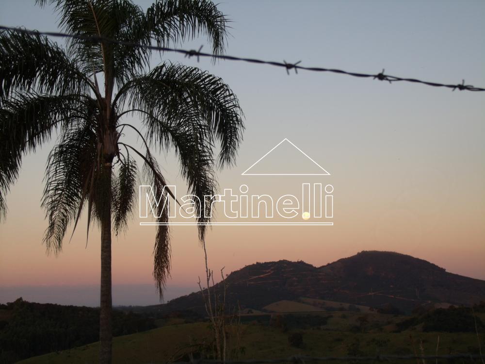 Comprar Rural / Fazendas - Sitios em Caconde apenas R$ 650.000,00 - Foto 11