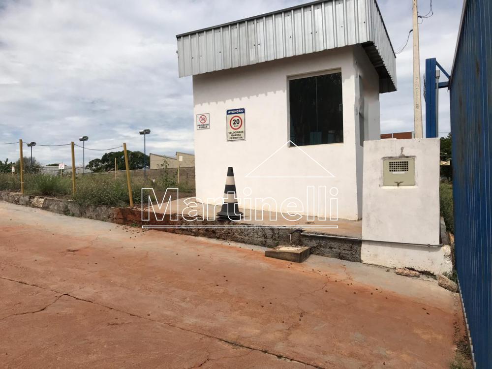 Alugar Terreno / Comercial em Ribeirão Preto apenas R$ 9.000,00 - Foto 4