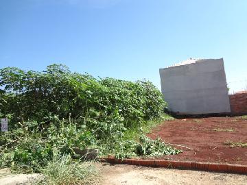 Alugar Terreno / Terreno em Ribeirão Preto. apenas R$ 90.000,00
