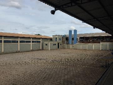 Alugar Imóvel Comercial / Galpão / Barracão / Depósito em Ribeirão Preto apenas R$ 17.000,00 - Foto 5