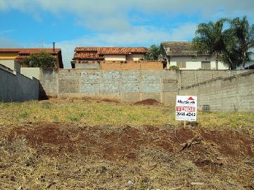 Alugar Terreno / Terreno em Ribeirão Preto. apenas R$ 215.000,00