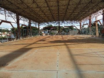 Alugar Imóvel Comercial / Imóvel Comercial em Ribeirão Preto apenas R$ 65.000,00 - Foto 14