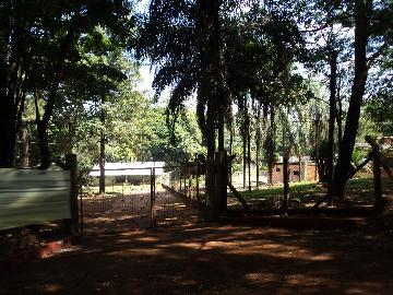 Rural / Chácara em Ribeirão Preto Alugar por R$9.500,00