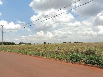 Cravinhos Cravinhos Terreno Venda R$1.300.000,00  Area do terreno 5100.00m2