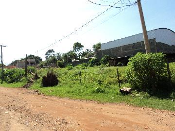 Alugar Terreno / Padrão em Ribeirão Preto R$ 4.000,00 - Foto 1