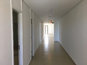 Alugar Imóvel Comercial / Sala em Ribeirão Preto apenas R$ 18.000,00 - Foto 13