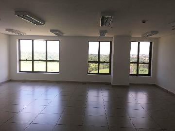 Alugar Imóvel Comercial / Sala em Ribeirão Preto apenas R$ 18.000,00 - Foto 17
