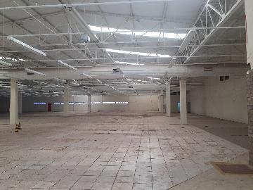 Alugar Imóvel Comercial / Galpão / Barracão / Depósito em Ribeirão Preto apenas R$ 150.000,00 - Foto 4