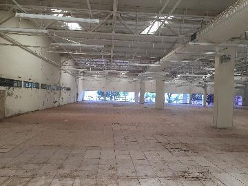 Alugar Imóvel Comercial / Galpão / Barracão / Depósito em Ribeirão Preto apenas R$ 150.000,00 - Foto 5
