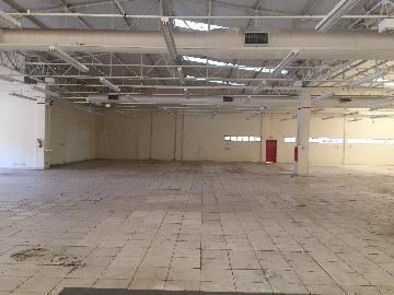 Alugar Imóvel Comercial / Galpão / Barracão / Depósito em Ribeirão Preto apenas R$ 150.000,00 - Foto 6