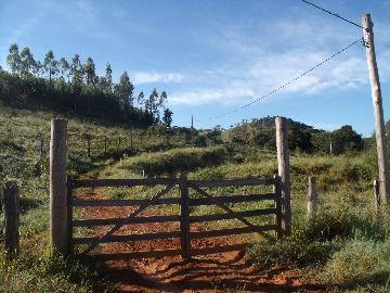 Comprar Rural / Fazendas - Sitios em Caconde apenas R$ 650.000,00 - Foto 2
