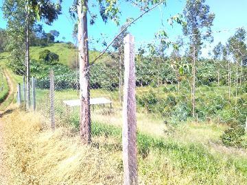 Comprar Rural / Fazendas - Sitios em Caconde apenas R$ 650.000,00 - Foto 7
