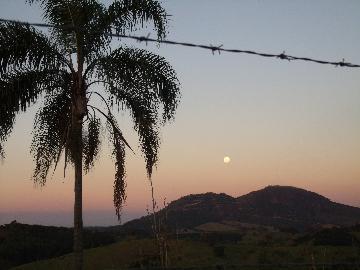 Comprar Rural / Fazendas - Sitios em Caconde apenas R$ 480.000,00 - Foto 11