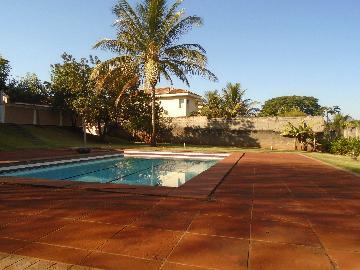 Alugar Casa / Condomínio em Bonfim Paulista apenas R$ 6.500,00 - Foto 30