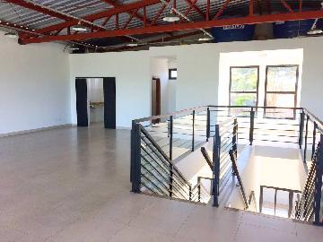 Alugar Imóvel Comercial / Imóvel Comercial em Ribeirão Preto apenas R$ 11.000,00 - Foto 10