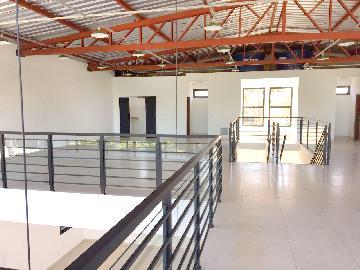 Alugar Imóvel Comercial / Imóvel Comercial em Ribeirão Preto apenas R$ 11.000,00 - Foto 13