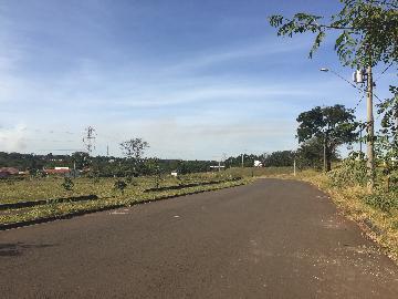 Comprar Terreno / Terreno em Ribeirão Preto apenas R$ 1.800.000,00 - Foto 3