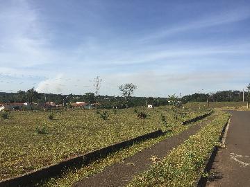 Comprar Terreno / Terreno em Ribeirão Preto apenas R$ 1.800.000,00 - Foto 6