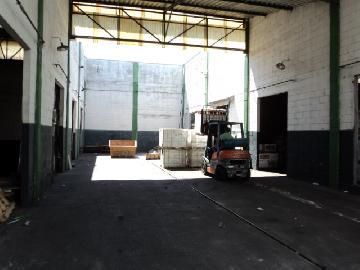 Alugar Imóvel Comercial / Galpão / Barracão / Depósito em Ribeirão Preto apenas R$ 10.000,00 - Foto 8