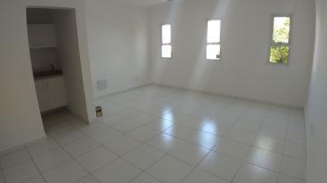 Imóvel Comercial / Sala em Ribeirão Preto Alugar por R$1.150,00