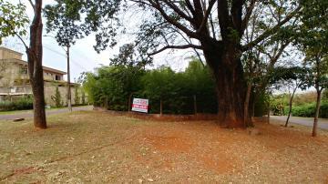 Alugar Casa / Condomínio em Jardinópolis. apenas R$ 750.000,00
