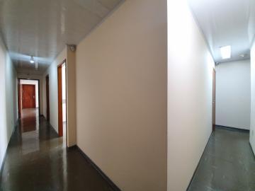 Imóvel Comercial / Sala em Ribeirão Preto Alugar por R$1.300,00