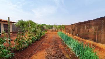 Comprar Casa / Condomínio em Jardinópolis R$ 980.000,00 - Foto 41